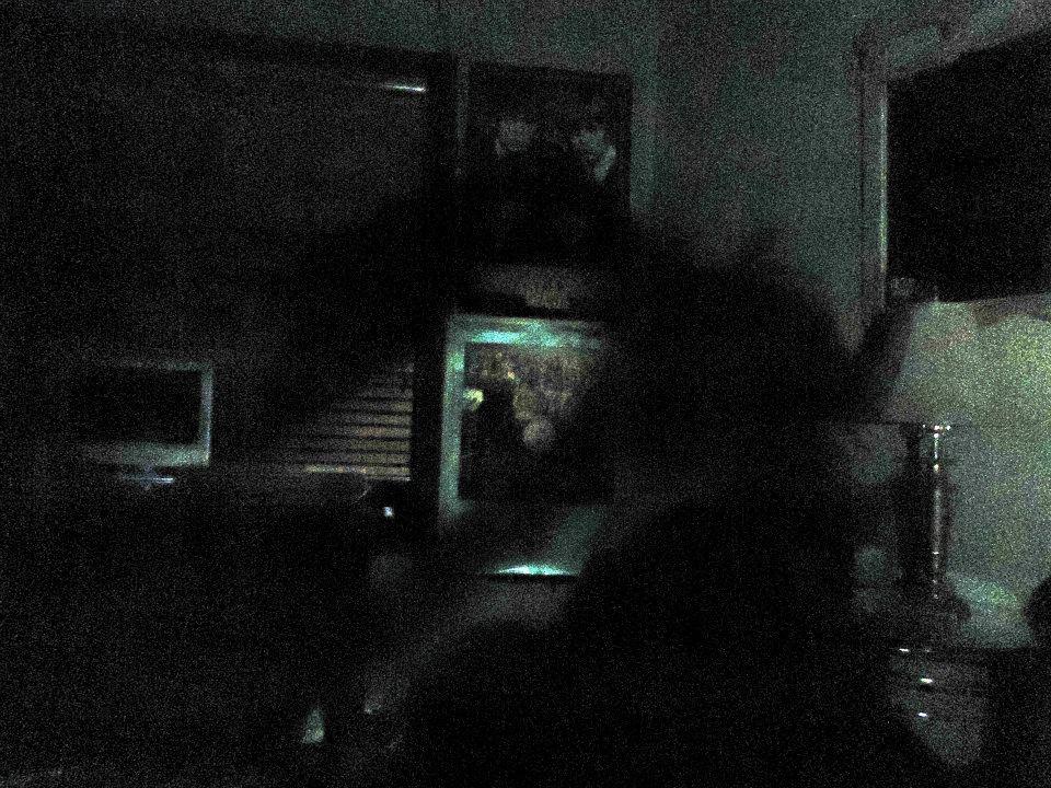 Dark Green Room White Borders